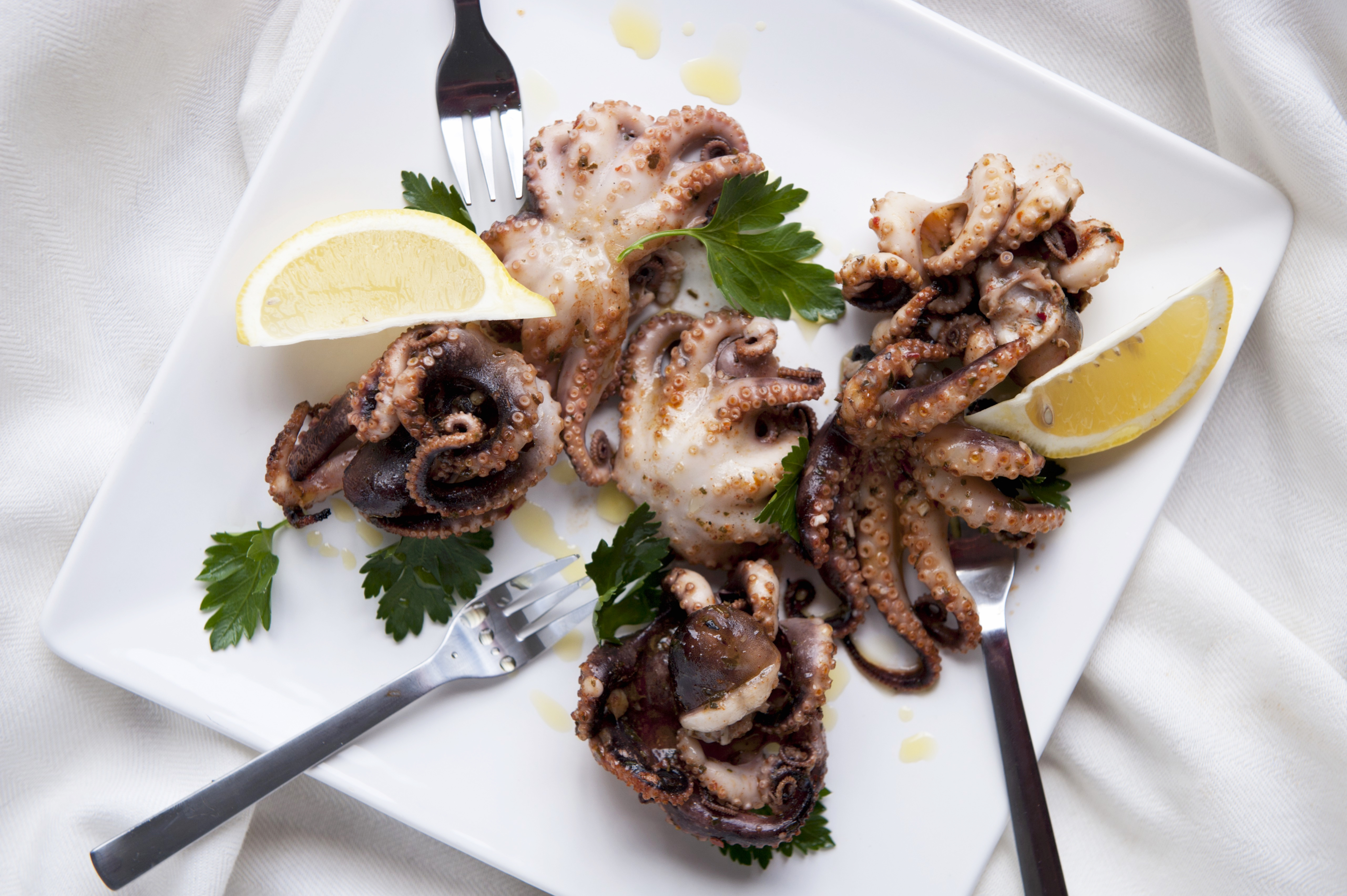 Why You Should Say Yes to Eating That Baby Octopus Thing
