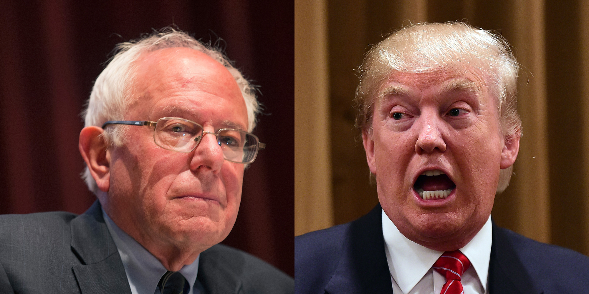 donald trump and bernie sanders are calling for a revolution. Black Bedroom Furniture Sets. Home Design Ideas