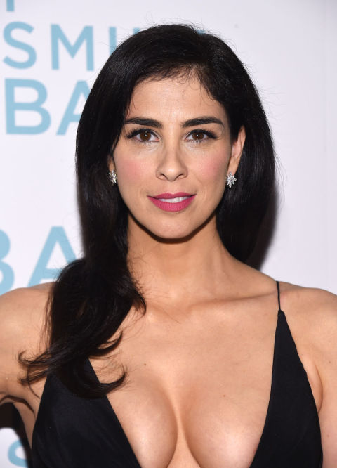 Sarah Silverman Cleavage Photos Red Carpet Pictures