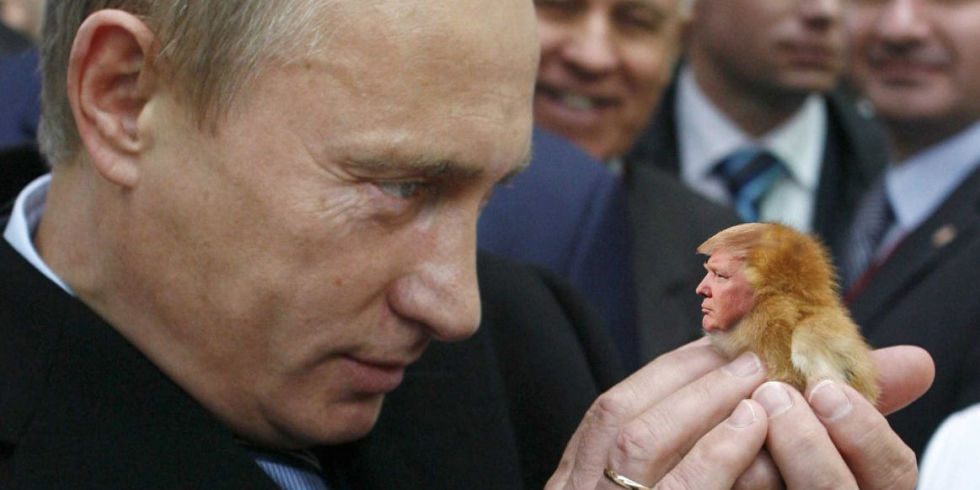Image result for bromance putin and trump