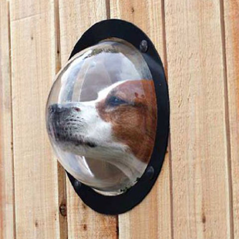 $32 BUY NOWThis window is like a fishbowl for dogs, allowing them to see what lies beyond the fence they probably love to sit and bark at ceaselessly. Though it was around before 2016, we only recently discovered it, and we feel you should know about it.