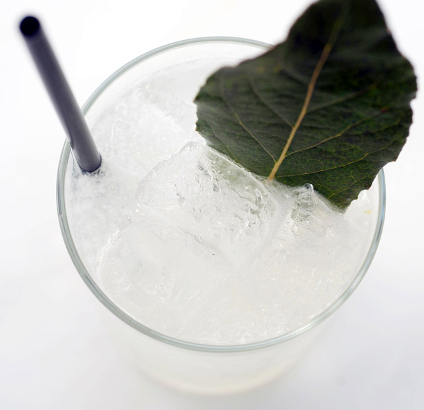 Snapdragon Cocktail of the Week Recipe - How to Make a Perfect ...