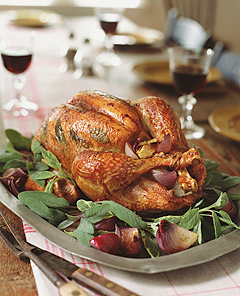 Quick and easy thanksgiving turkey recipes