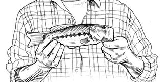 How to make your small fish look like a big catch for How to make a fish trap for big fish